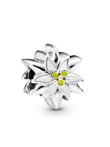 Charm -Edelweiß- Pandora Silberfarben