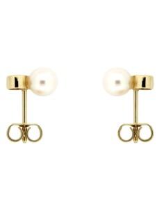 Ohrstecker 585/- Gold Süßwasserzuchtperle Weiß Süßwasserzuchtperle 0,95cm Glänzend 0.0600 Karat Orolino gelb
