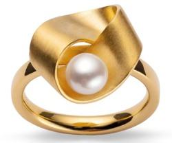 Ring von Bastian 39310